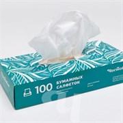 Салфетки бумажные двухслойные вытяжные 100шт/уп